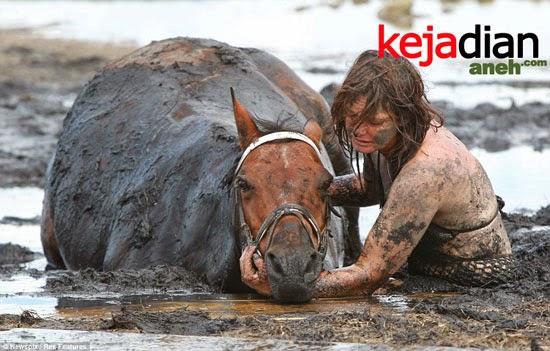 Perjuangan Dokter Gigi Selamatkan Kudanya dari Lumpur Hisap