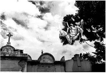 Cementerio Recoleta Bs As. C.F Argentina
