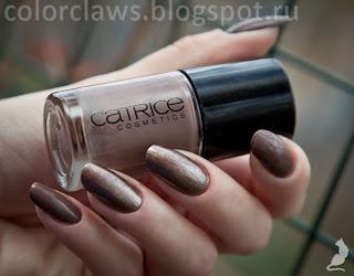 Catrcie Beavis & Mud-Head + Browno Mars