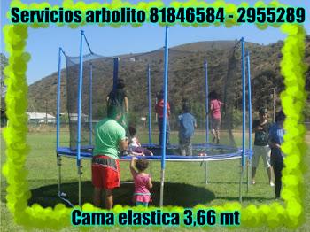 CAMA ELASTICA DE 3,66 MT