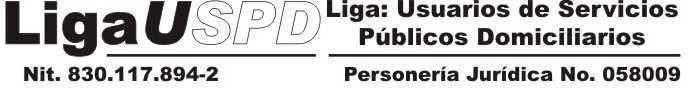 Liga USPD