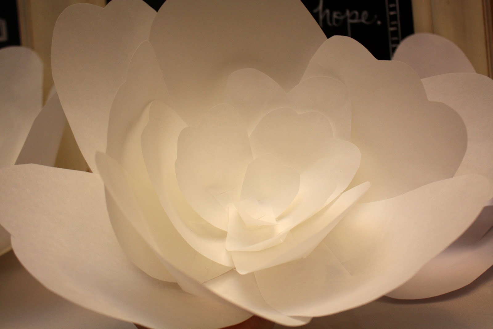 At Second Street DIY giant paper flowers
