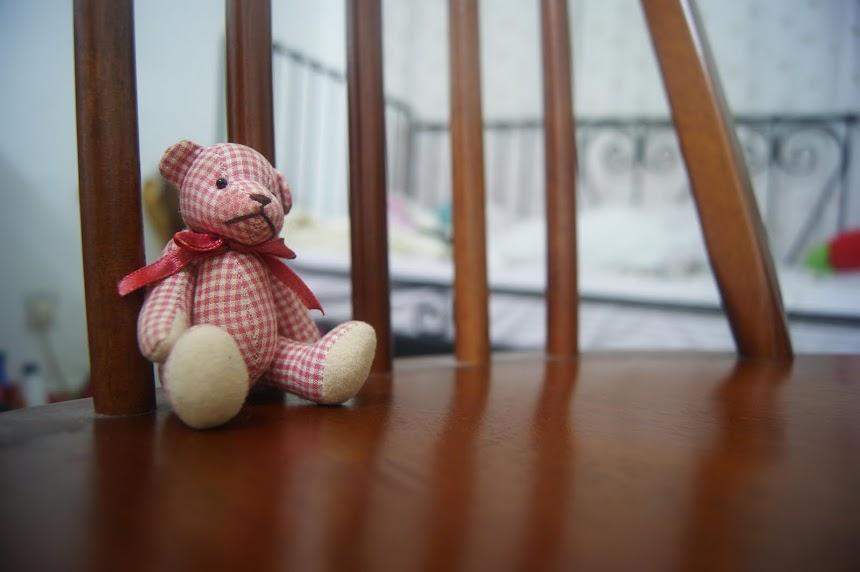 kisah hidupku sebagai teddybear