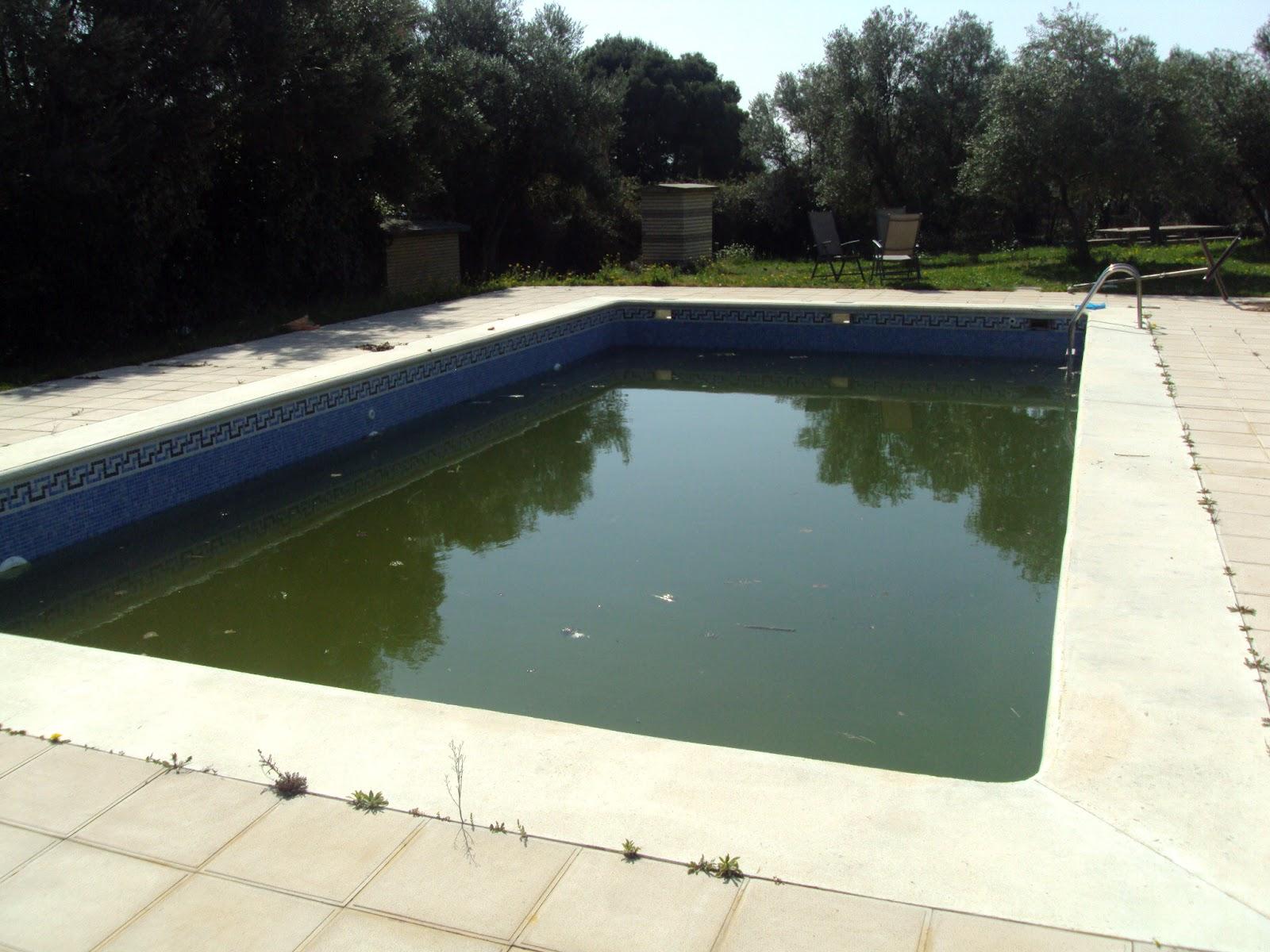 Limpiezas fago navarro limpieza piscina e f a pinseque for Piscinas climatizadas zaragoza