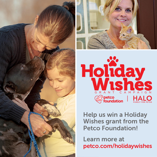http://www.petco.com/petco_Page_PC_foundationholiday.aspx