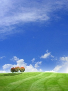 Windows 7 XP Wallpapers