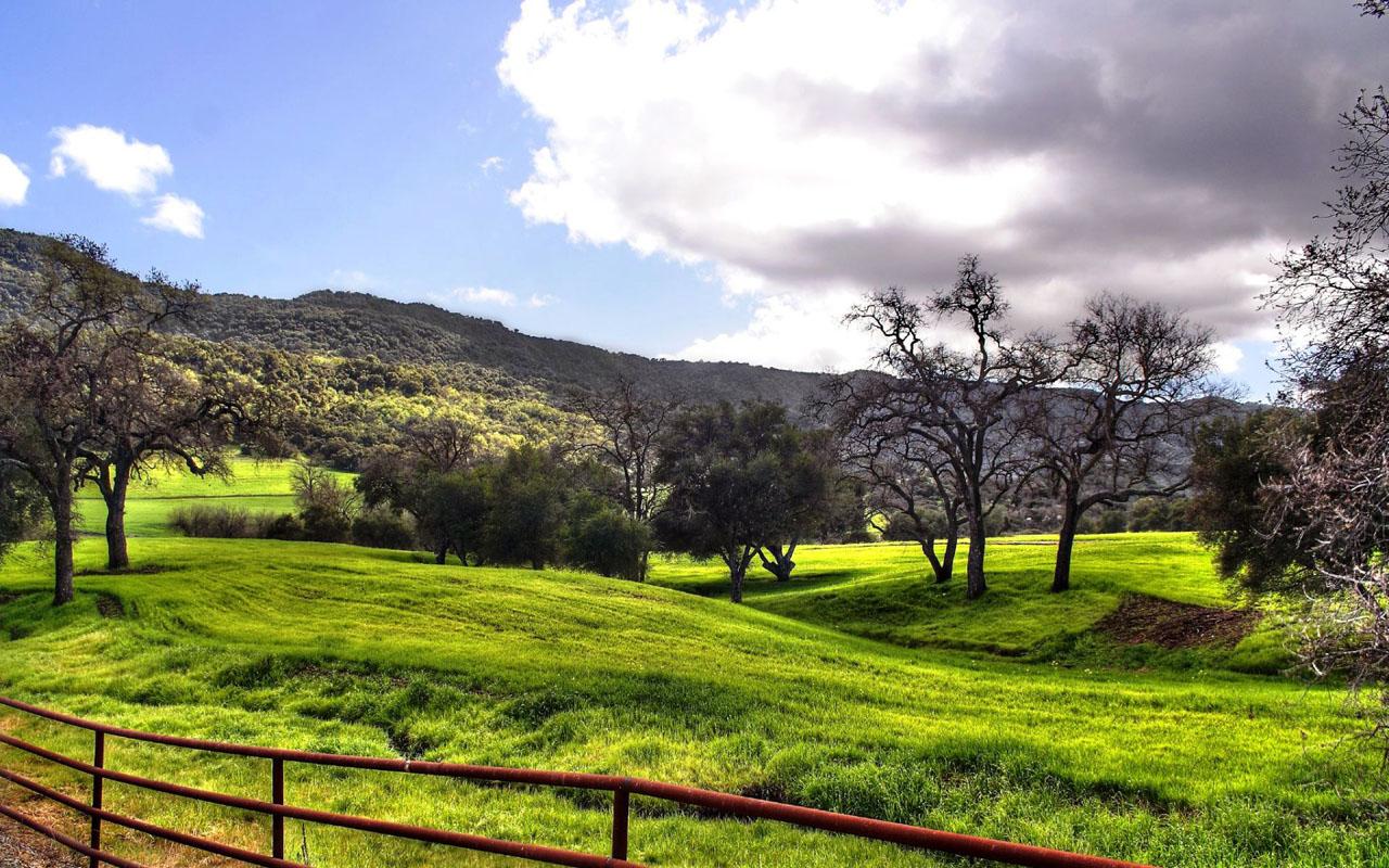 http://4.bp.blogspot.com/-GxIssscWT-E/TdnhvcvdXGI/AAAAAAAAA04/lda2Cpn_EZM/s1600/Grassland-Landscape-Wallpaper.jpg