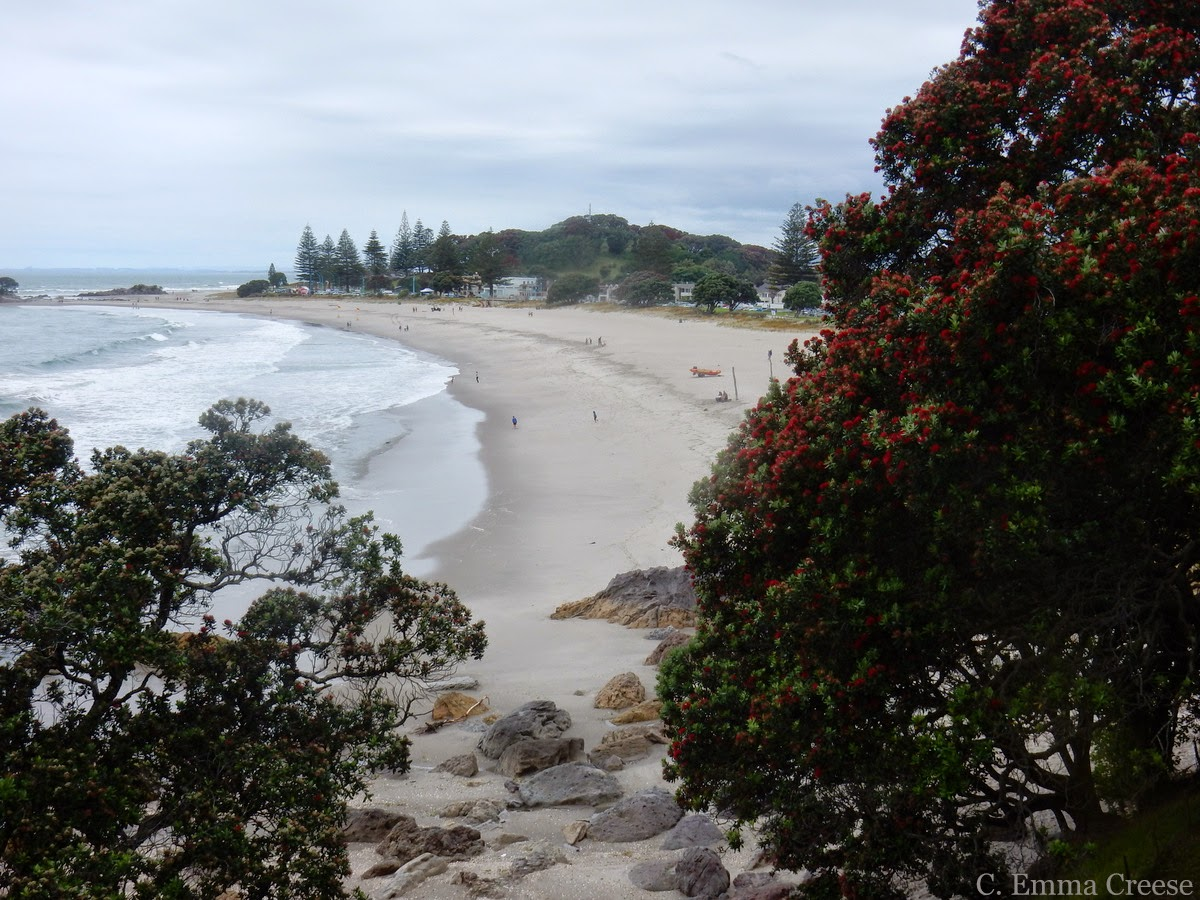 Mount Maunganui and pies - Christmas - Adventures of a London Kiwi