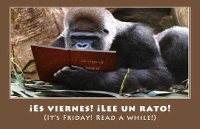Gorila Reading
