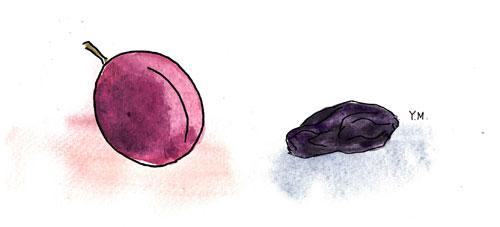 Prune by Yukié Matsushita
