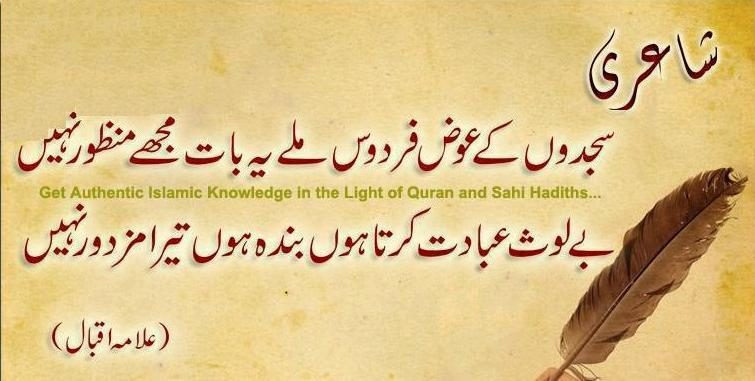 essay on seerat un nabi