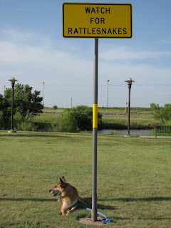 Watch for Rattlesnakes