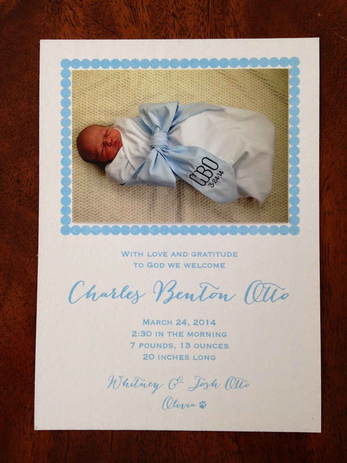 The Pink Elephant Diy Birth Announcements