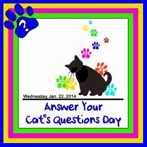 Cat*s Question Day - 22nd January 2014