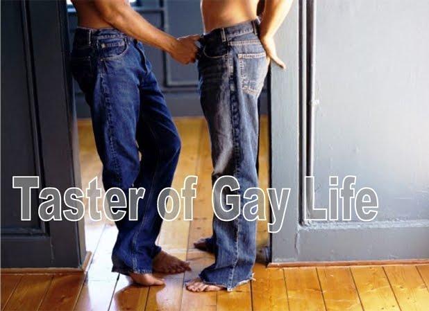 Taster of Gay Life