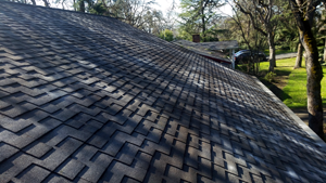 Roofs - Home Improvement: choosing the best roofing material