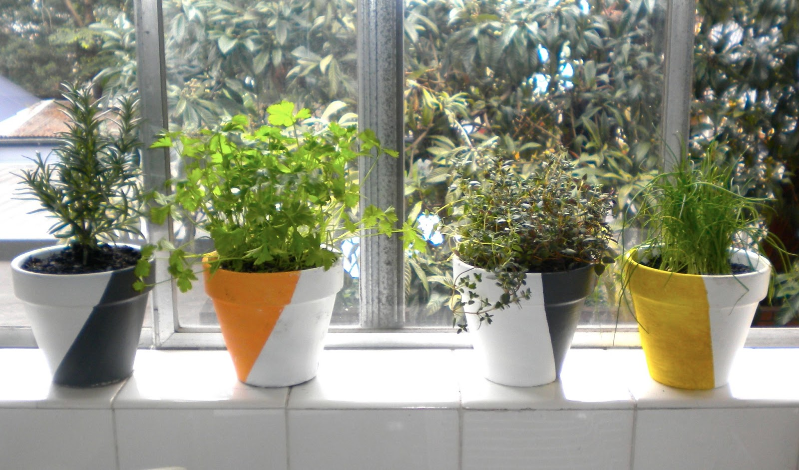 Window Sill Herb Garden Pots Emerald and may diy fresh painted terracotta pots workwithnaturefo