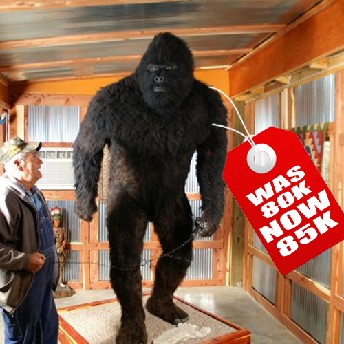 No Takers on $80000 Bigfoot Price Goes Up to $85000 & Bigfoot News   Bigfoot Lunch Club: No Takers on $80000 Bigfoot ...
