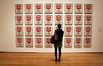 ARCA VERCELLI - Quest'anno tanta Pop. Oltre 50 opere di artistiamericani ed europei.