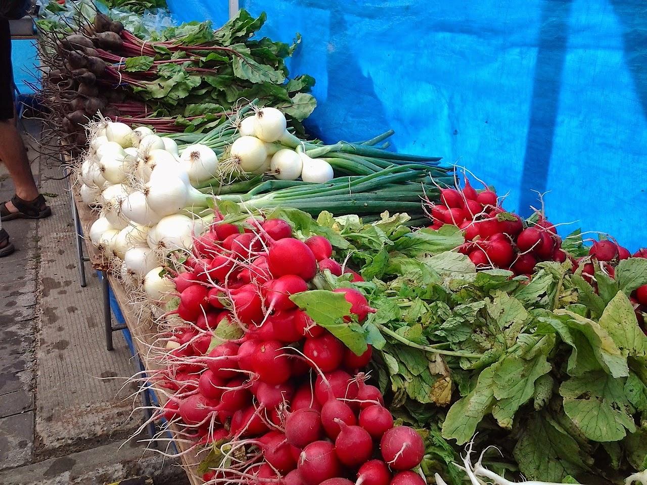 st albert farmers market alberta