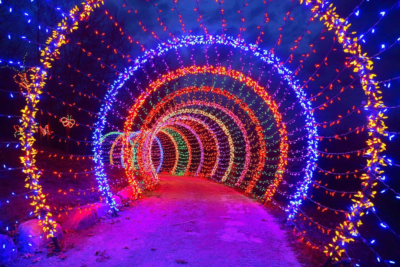 HLAA Boston Holiday Swirls Photo