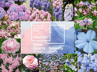 kwiaty w kolorach roku 2016