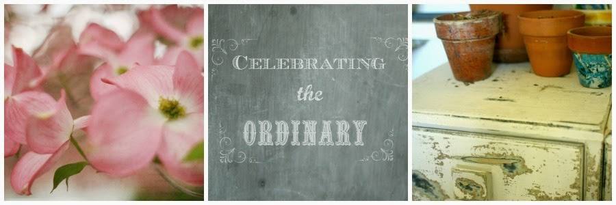 Celebrating the Ordinary