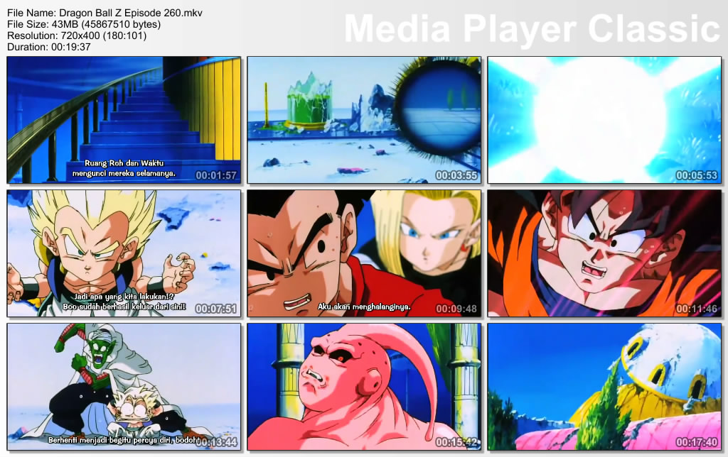 Download Film / Anime Dragon Ball Z Majin Buu Saga Episode 260 Bahasa