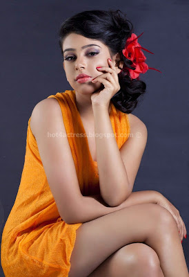 Telugu actress neeti taylor latest hot photoshoot