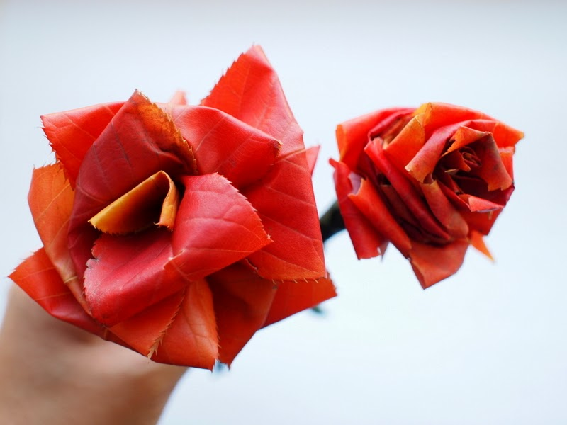 Making roses out of autumn leaves pink stripey socks how to make flowers from fall leaves mightylinksfo