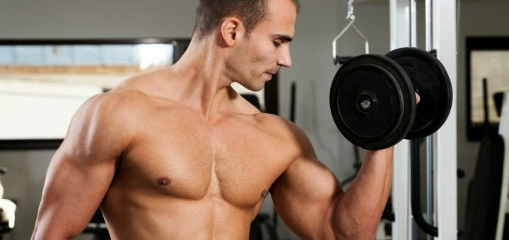 How to build Muscle tissue by this Sensible Means