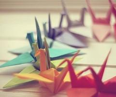 Risa Fox Paper Swans D