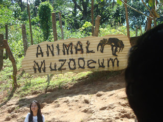 animal muzooeum in zoobic safari