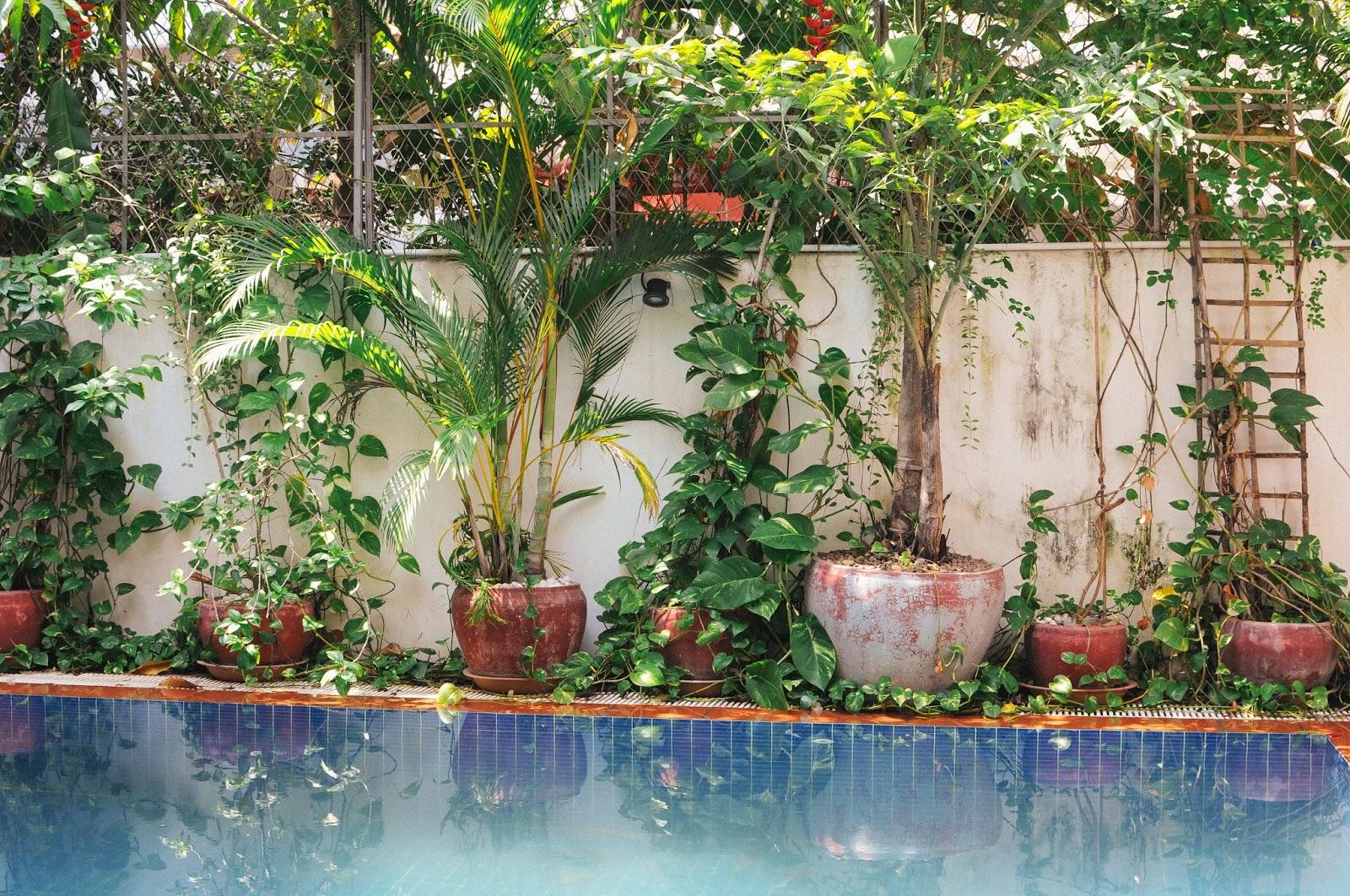 Little Garden, Phnom Penh