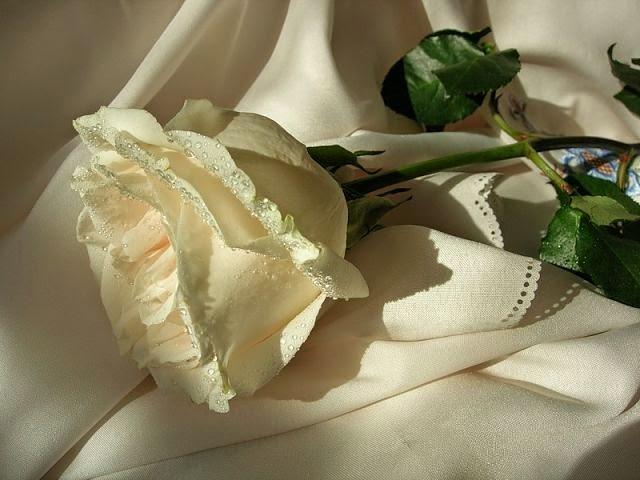 День рождения и подарок для вас!  Блог Ильдара