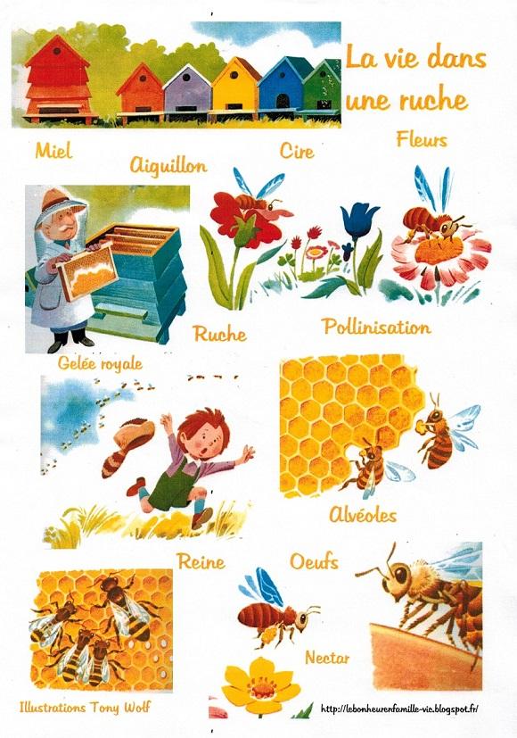 Le bonheur en famille petite fiche sur les abeilles - Comment faire fuire les abeilles ...