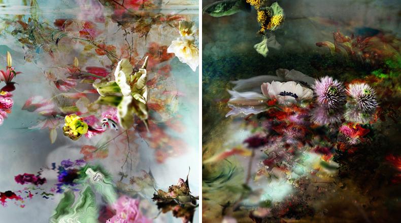 Magníficos y expresivos retratos de flores por Isabelle Menin