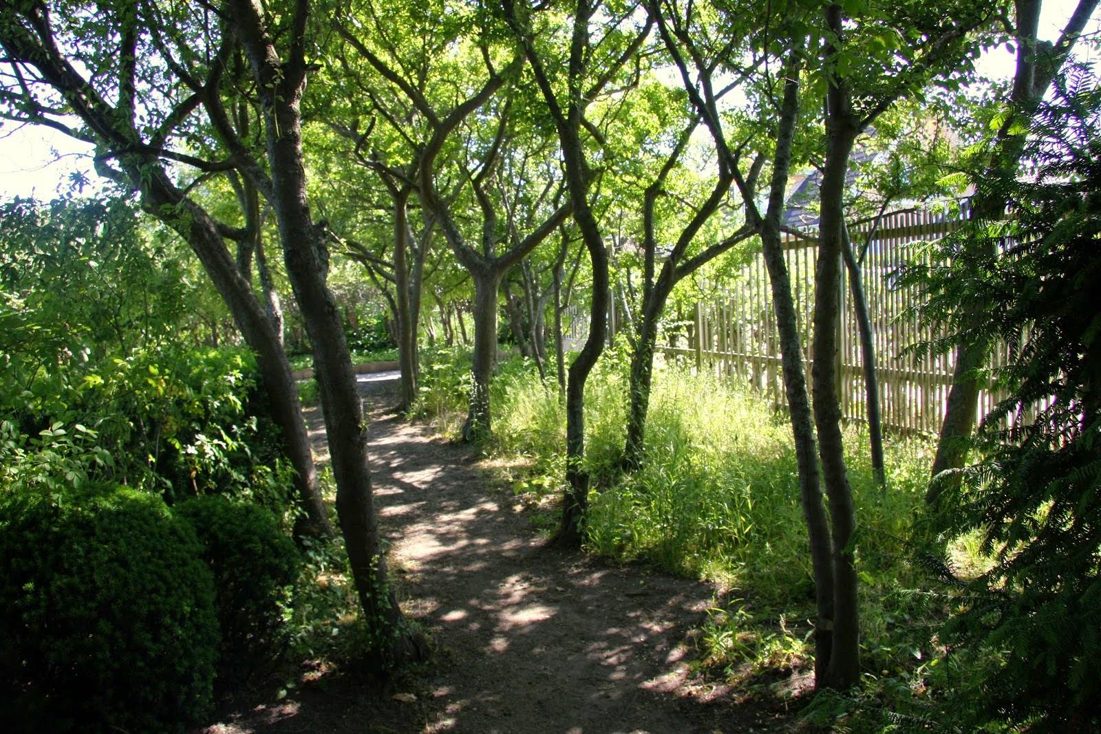 Trädgård plank trädgård : FröpÃ¥sen: Planktankar