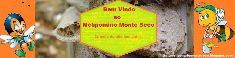 Meliponário Monte Seco