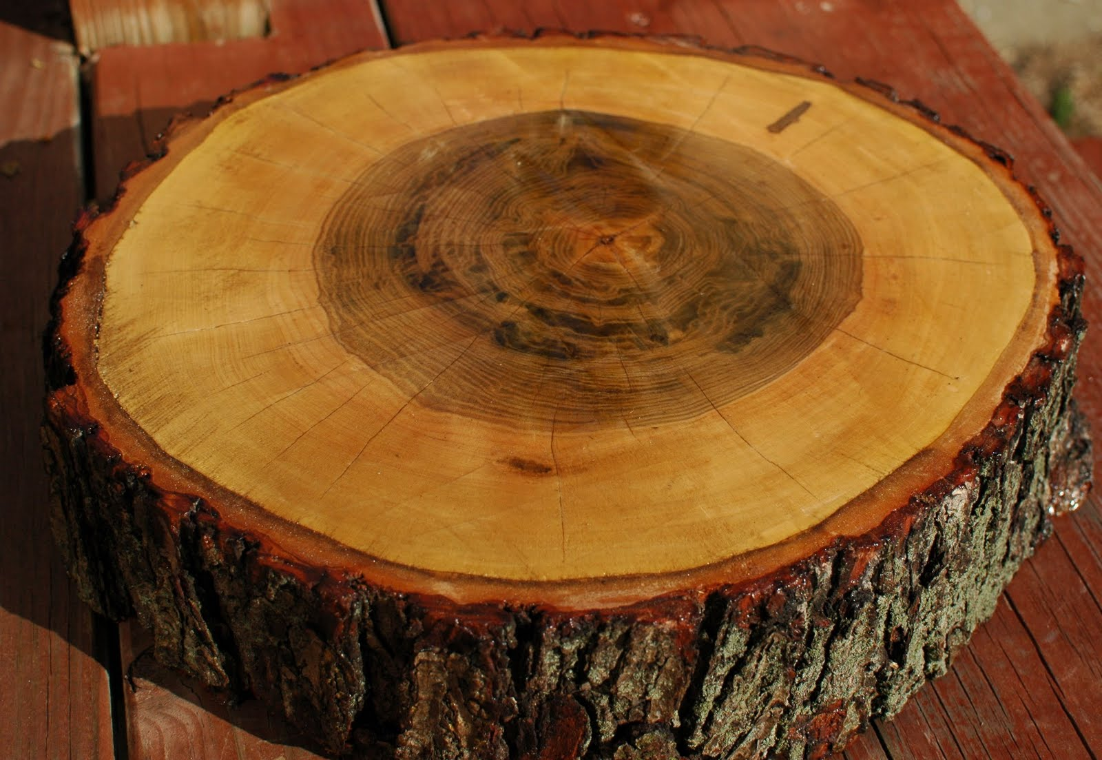 Lavender belles tree stump slice cake stand for Large tree trunk slices