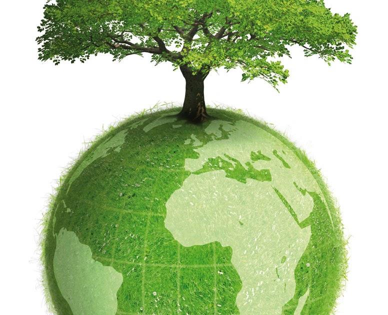 Desarrollo sustentable 1 ecolog a y medio ambiente for Medio en el que habitan los arboles