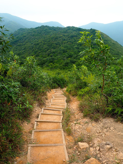 Stairs down from Shek O Peak, on Dragon's Back hiking trail, Hong Kong Island