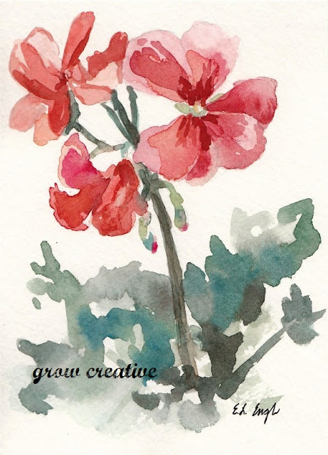 watercolor geranium flowers