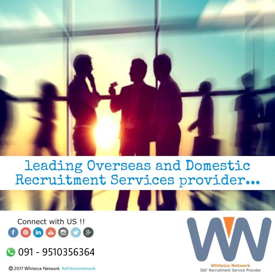 Whiteice Network - 360' Recruitment Service Provider
