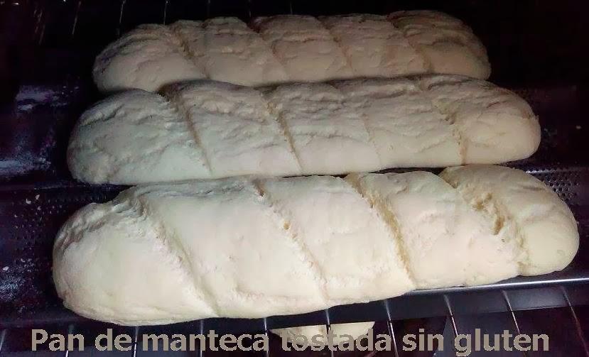 Cocinando en un valle c ntabro baguettes y panecillos de for Hornear a blanco