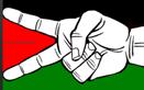 Palestine solidarity