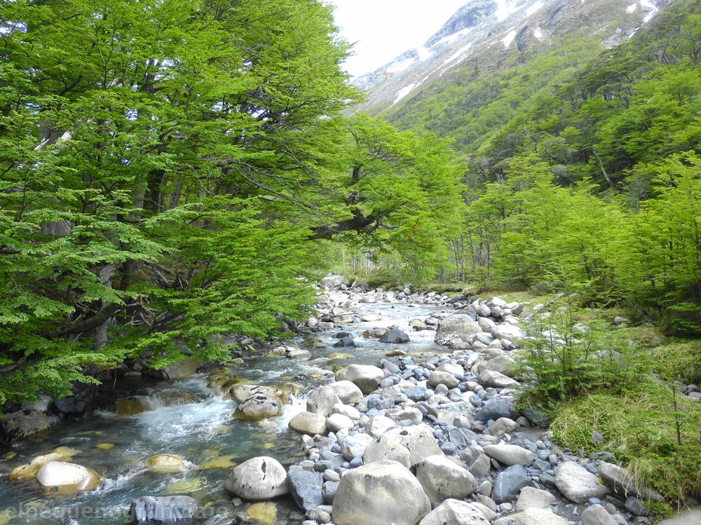 Río Perros, Parque Nacional Torres del Paine