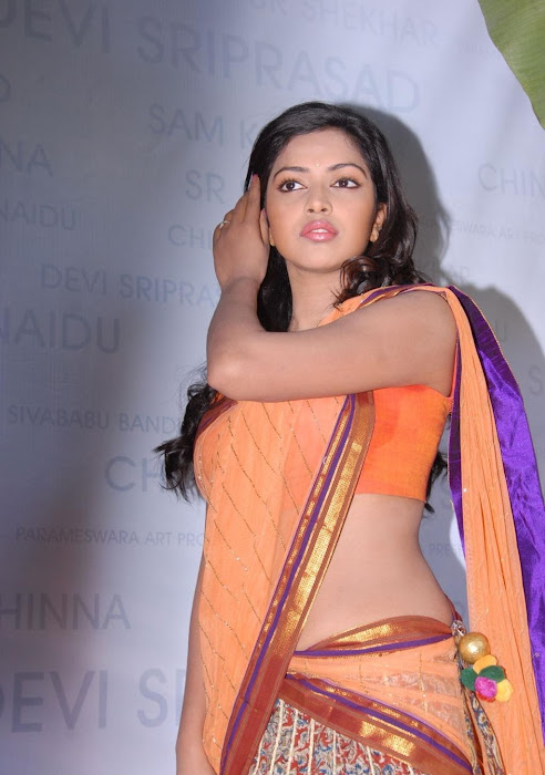 amala paul new saree latest photos
