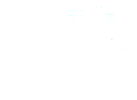 The Runnies!