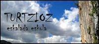 turtzioz blog
